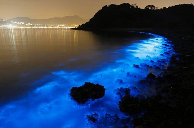 Sea Sparkle.JPEG-06b00 - 4